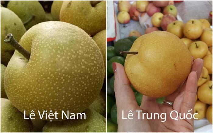 Mẹo đơn giản phân biệt lê Việt Nam và lê Trung Quốc - ảnh 1.